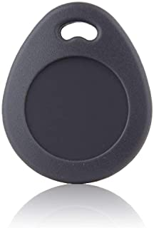 Blaupunkt Security TAG-S1 - Llavero RFID